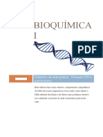 Relatorio DNA