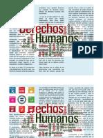 ARTICULO DE OPINION DERECHOS HUMANOS