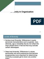 Diversity in Organization (2)