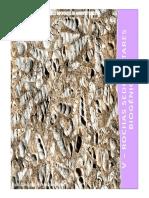 v-rochasbiogenicas-100317051522-phpapp01
