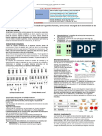 GENÉTICA HUMANA 2  9-II PERIODO (5)