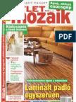 Otlet.mozaik.2011.02.pdf-vassi