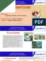 MEDIO AMBIENTE -ECOSISTEMA -CINTHIA