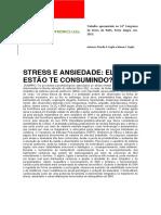 STRESS-E-ANSIEDADE-ELES-ESTÃO-TE-CONSUMINDO-ISMA-2014