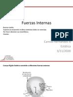 13-01 - Fuerzas Internas
