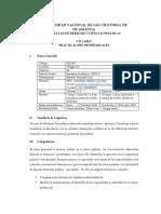 SILABO DE PRACTICAS PRE PROFESIONALES