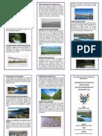 BIODIVERSIDAD EN EL PERÚ HUMEDALES DEL PERU4