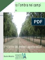 sistemi_agroforestali