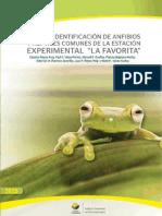 L_Identificacion_de_anfibios_y_reptiles_la_favorita-1