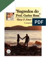 O AMOR - vol 11 - CASAMENTO