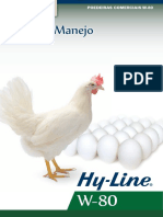 Hy-Line W-80