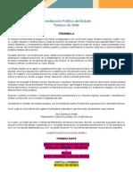 constitucion politica del Estado Plurinacional de Bolivia 2009