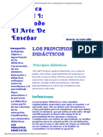 LOS PRINCIPIOS DIDÁCTICOS - Didáctica