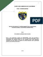 eBook - Gestão de Perdas e o Gerenciamento Pelas Diretrizes Potencializando a Segurança Empresarial-sérgio Caldas