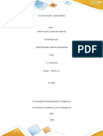 Cultivos CM-Fase1
