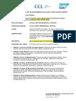 Acti - Cotizacion Sap Pm