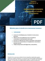 PCA 14 Métodos de Estudio Cromosomas Humanos