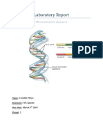 Laboratory Report- DNA extraction