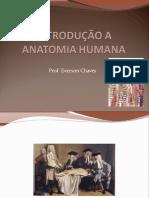 introducao_anatomia