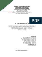 PLAN DE INVERSIÓN (JOHANNA-UPTP)