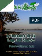 Revista 15 - IV Corregida