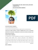 CONCEPTOS BASICOS DE UNA EVALUACION DE IMPACTO AMBIENTAL