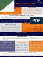 COT-2020-infografia