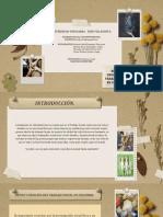Retos y Desafios del trabao social en Colombia Diapositivas._2
