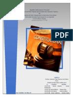Marco Legal IP, Derecho Costitucional.