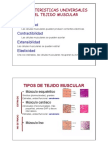 tejido_muscular