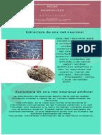 Actividad 7 - REDES NEURONALES pattry