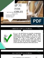 NICSP 31 - ACTIVOS INTANGIBLES