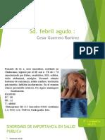 Sd. Febril Agudo Capacitacion DISA2
