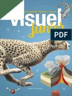 Visuel Junior, Le - Quebec Amerique