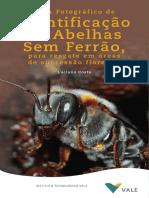 2019 Guia Identificação de Abelhas Oficial