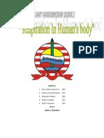 report of experiment human respiratory