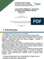 _SLID_Apresentação_Gestão Ambiental
