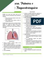 1. Pleura, Pulmão e Árvore Traquiobrônquica