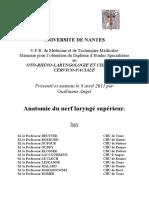 3-Anatomie Du Nerf Laryngé Supérieur. Thèse