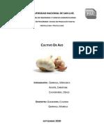 Examen Producción Horticultura y Fruticultura Ajo - Quiroga Aostri Casagrande