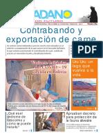 El-Ciudadano-Edición-411