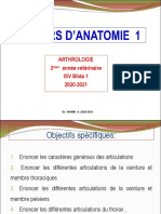 Cours d'Anatomie Arthrologie
