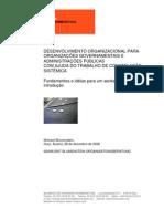 bra project brasilia 2007 v02 port