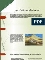 Tomo 1. Que es el Sistma Miofascial