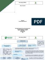 Mapa Conceptual BIOTECNOLOGIA