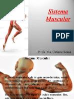 Aula 05 Sistema Muscular