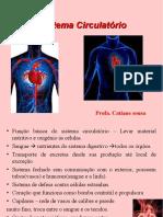 Aula 06 Sistema Circulatório