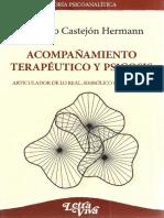 Acompañamiento Terapéutico y Psicosis [Maurício Castejón Hermann]