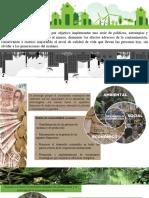 desarrollo sustentble