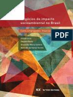 Negócios-de-impacto-socioambiental-no-Brasil_Como empreender, financiar e apoiar_ebook